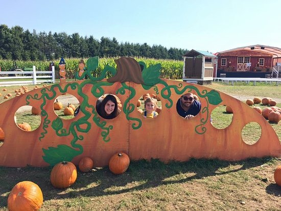 Melville, NY: Great day to pick pumpkins with my little pumpkin.
