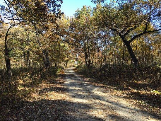Wheaton, IL: photo2.jpg