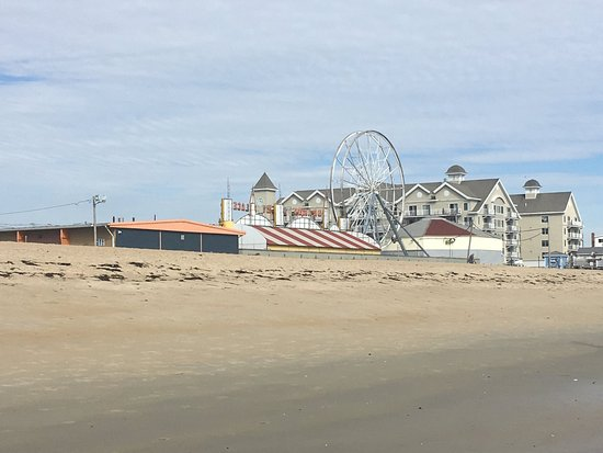 Old Orchard Beach Dog Friendly