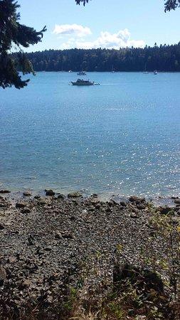 Thetis Island Foto
