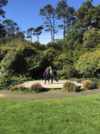 Heath Heather Collection At Mendocino Coast Botanical Gardens Picture Of Mendocino Coast