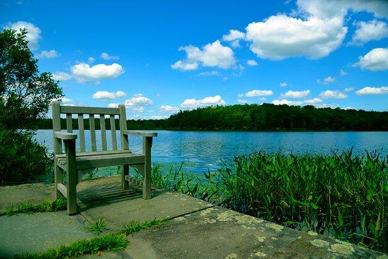 Lake Ariel, PA: Lake Lacawac
