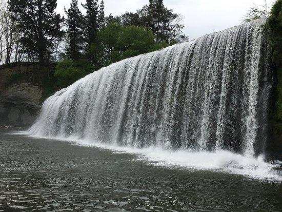 Gisborne, New Zealand: Up close