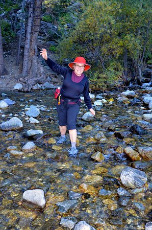 Alamosa, Κολοράντο: Anita negotiates Zapata Creek on way down the from the falls