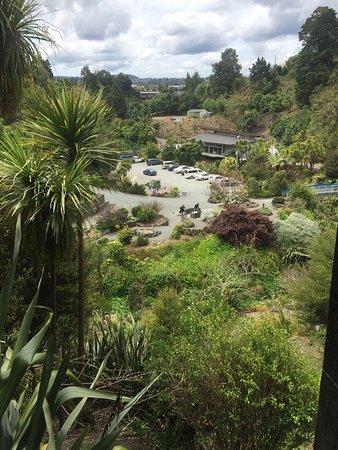 Whangarei, Nuova Zelanda: photo1.jpg