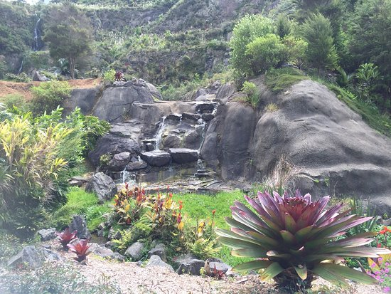 Whangarei, Nueva Zelanda: photo4.jpg
