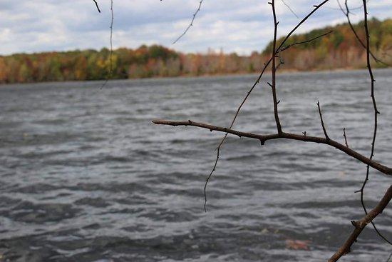 Cranbury, NJ: Plainsboro Preserve