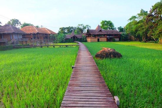 Phoomchai Guesthouse: photo9.jpg