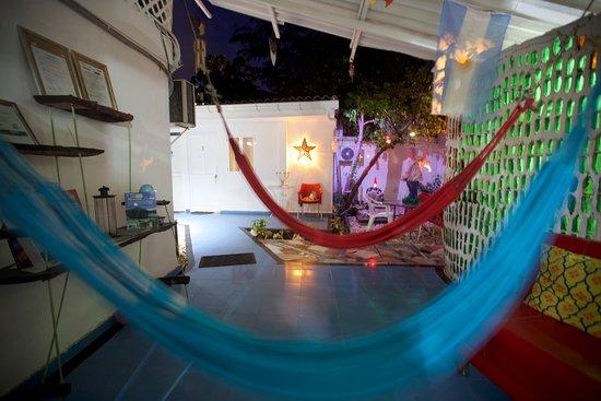 Posada Lizard House: Patio