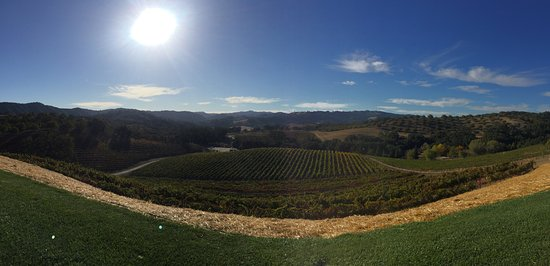 Paso Robles, CA: Beautiful hilltop view. Amazing location for a wedding!