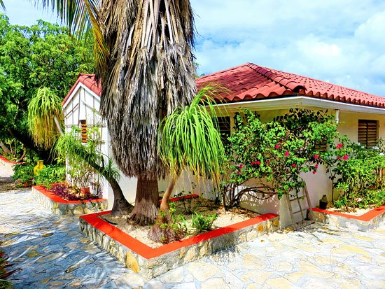Harbour Club Villas & Marina: Cottages surrounded by tropical flowers  bushes and trees.