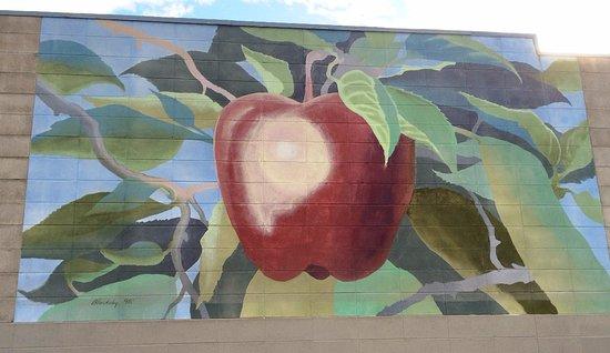 Chelan, واشنطن: Part 4: apples ready to harvest