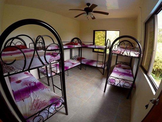 Fat Monkey Hostel