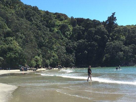 Waihi Beach, New Zealand: photo1.jpg