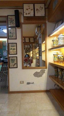 Herborarium Museum: intermo allo specchio
