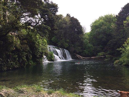 Havelock North, Nueva Zelanda: photo1.jpg