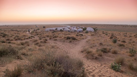 prince desert camp view
