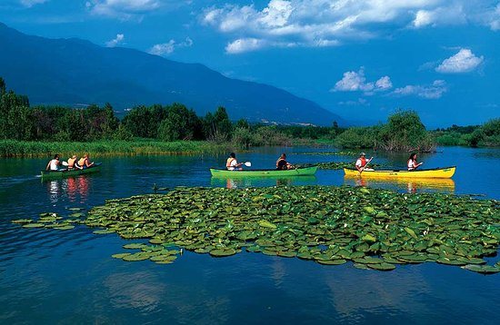 Central Macedonia, Greece: Lake Kerkini - Serres