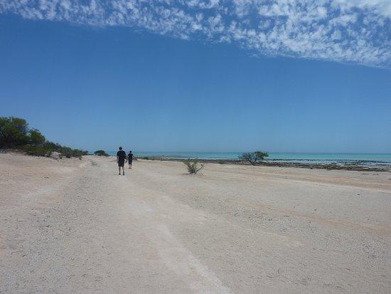 Denham, Avustralya: Along the trail