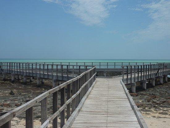 Denham, Avustralya: Stramatolite Boardwalk 2