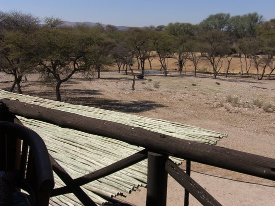 Omaruru, Namibia: Waterhole view from suite with balcony room 1