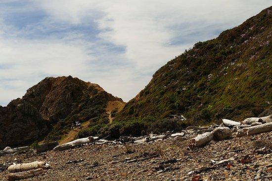 Porirua, New Zealand: Whitireia Park