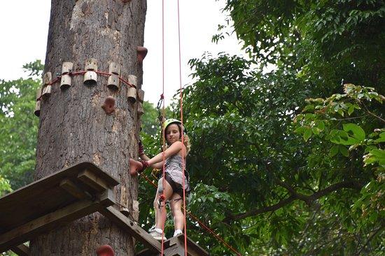 Jungle Xtrem Adventures Park: עץ טיפוס, 20 מטר