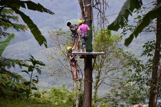 Chalong, Tayland: עולים לאומגות