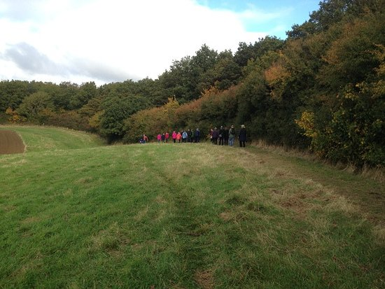 Brigstock, UK: Group walking along the footpath next to the woods