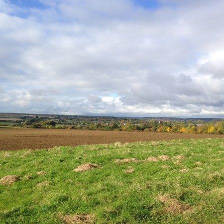 Brigstock, UK: Fields next to the woods