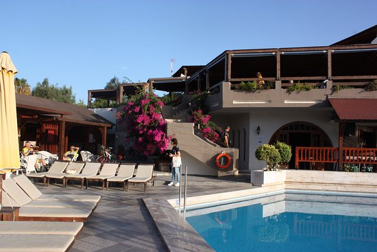 Gaia Garden: Uitzicht op bar/restaurant
