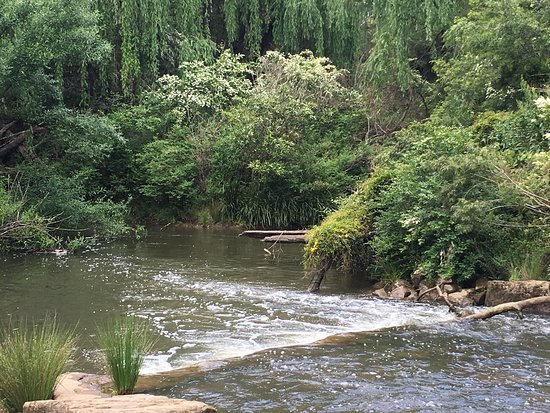 Windsor, Australia: photo1.jpg