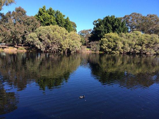 Belmont, Australia: Mirror image