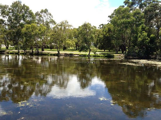 Belmont, Australia: Sawns