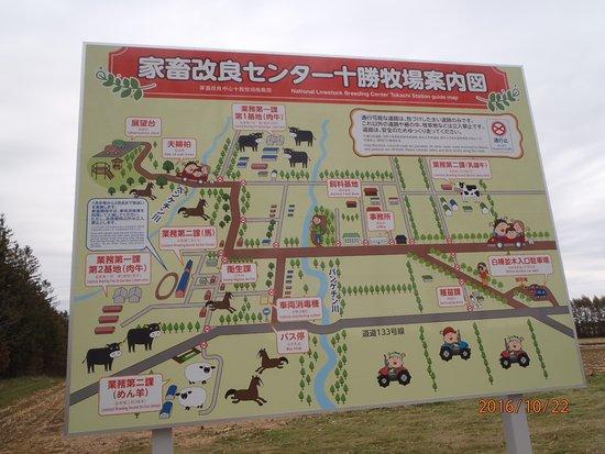 Фотография Otofuke-cho