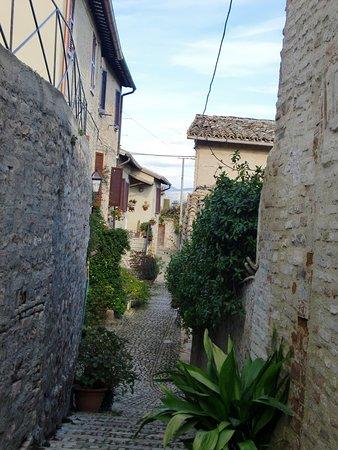 Montefalco照片