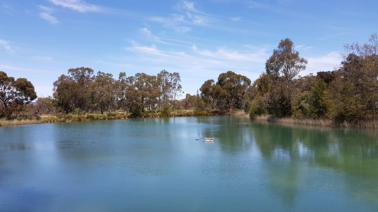 Nuriootpa, Αυστραλία: 20161024_132708_large.jpg