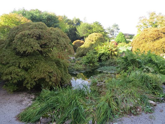 Kendal, UK: Rock Garden