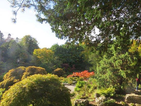Kendal, UK: Limestone Rock Garden