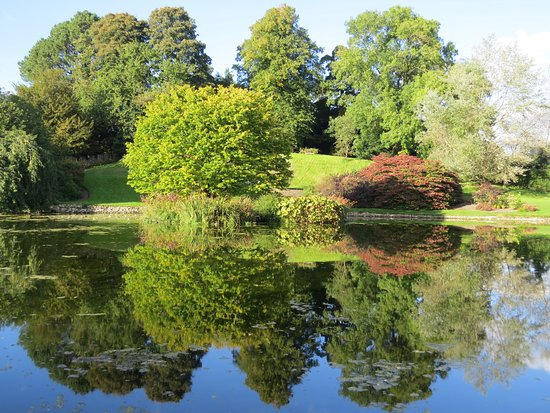 Kendal, UK: Trees and their reflection in the lake
