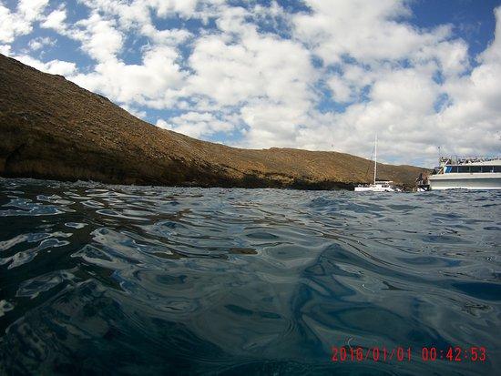 Wailuku, ฮาวาย: Molokini Crater
