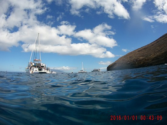 Wailuku, Havai: Molokini Crater