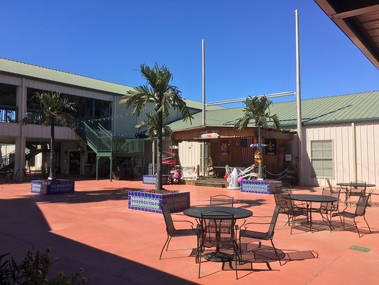 Photo1 Jpg Picture Of Cajun Palms Rv Resort Henderson