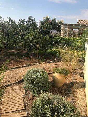 Kfar Kish, Israel: photo1.jpg