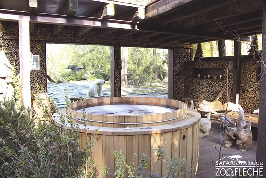 safari lodge jardin avec jacuzzi arctic lodge ours polaires