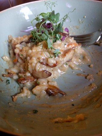 Lier, Bélgica: Risotto boschampignons. Culinair genot.