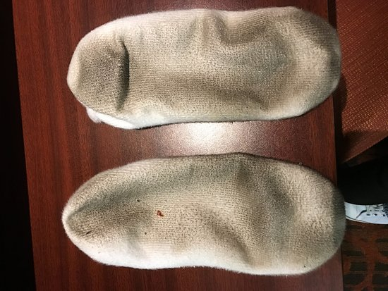 Ashland, KY: Room was dirty and smelled of cigarettes...here are my socks from walking on the carpet in the r