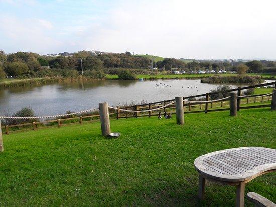 Marhamchurch, UK: The Lake at Weir Cafe, Bude