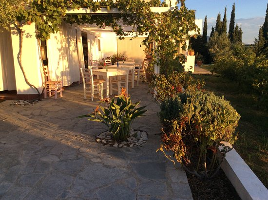 Icon Painter Villas: sunrise over the dining terrace