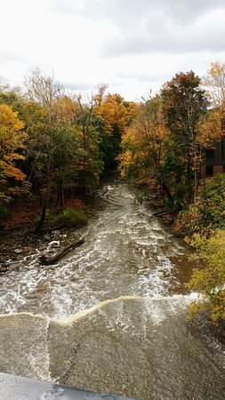 Chagrin Falls, OH: IMG_20161022_172007_large.jpg